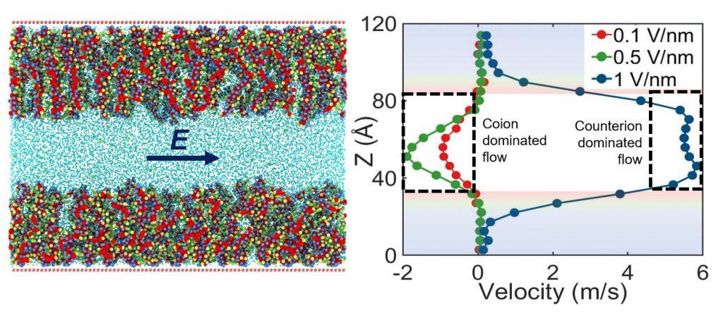 Comportamientos iónicos y de flujo abruptos con nanocanales funcionales