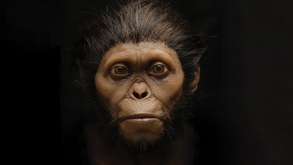 ¿Cómo pueden los científicos conocer mejor a nuestros parientes extintos?