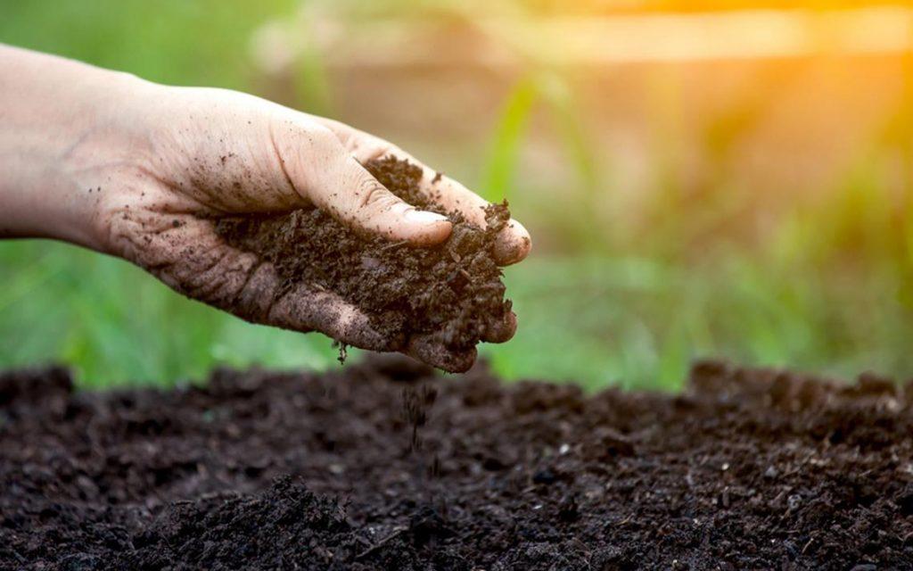 La Mesa Redonda de Minnesota cubre los beneficios holísticos de la salud del suelo