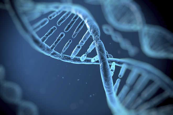 British-Indian chemist in Millennium Tech Prize winning team for revolutionary DNA tech
