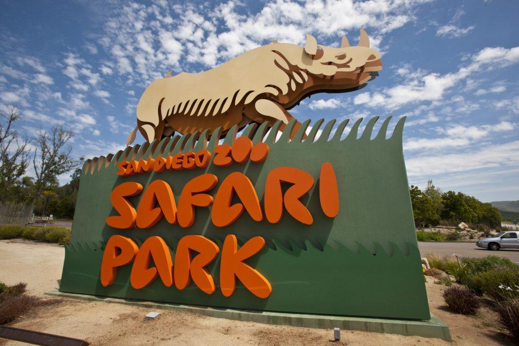 Los funcionarios de salud buscan a cualquiera que haya tocado un murciélago rabioso en un parque safari