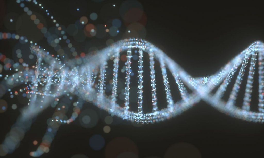 La misteriosa proteína hace que el ADN humano se transforme en diferentes formas.