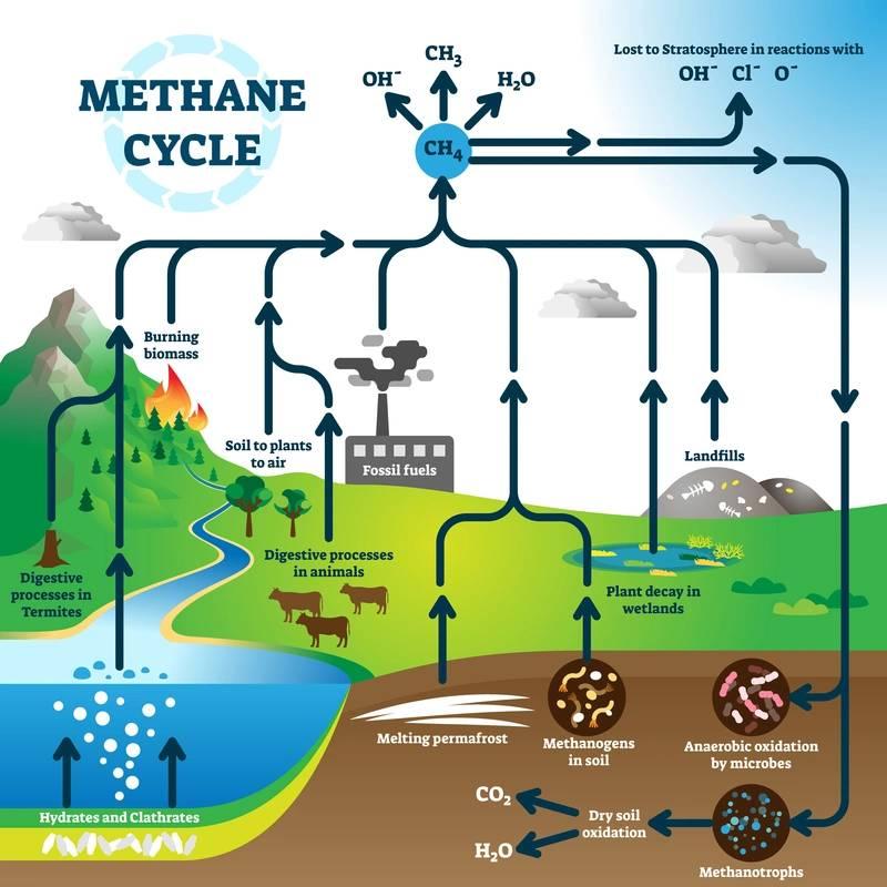 La reducción de las emisiones de metano ocupa un lugar central
