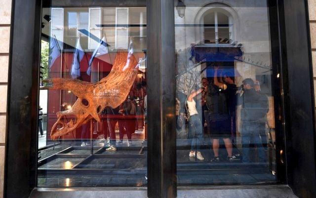 Esta no es la primera vez que se vende un esqueleto de dinosaurio.  La venta de uno de los esqueletos de Tyrannosaurus Rex más completos del mundo rompió las estimaciones de subasta el año pasado, cuando se vendió por 31,8 millones de dólares, estableciendo un nuevo récord mundial para cualquier esqueleto o fósil de dinosaurio vendido en una subasta.  Agencia de prensa de Francia
