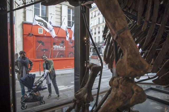 Los expertos dicen que la locura por los esqueletos de dinosaurios sigue aumentando y elevando los precios, lo que frustra a los museos y centros de investigación que a menudo no pueden recaudar fondos.  AP